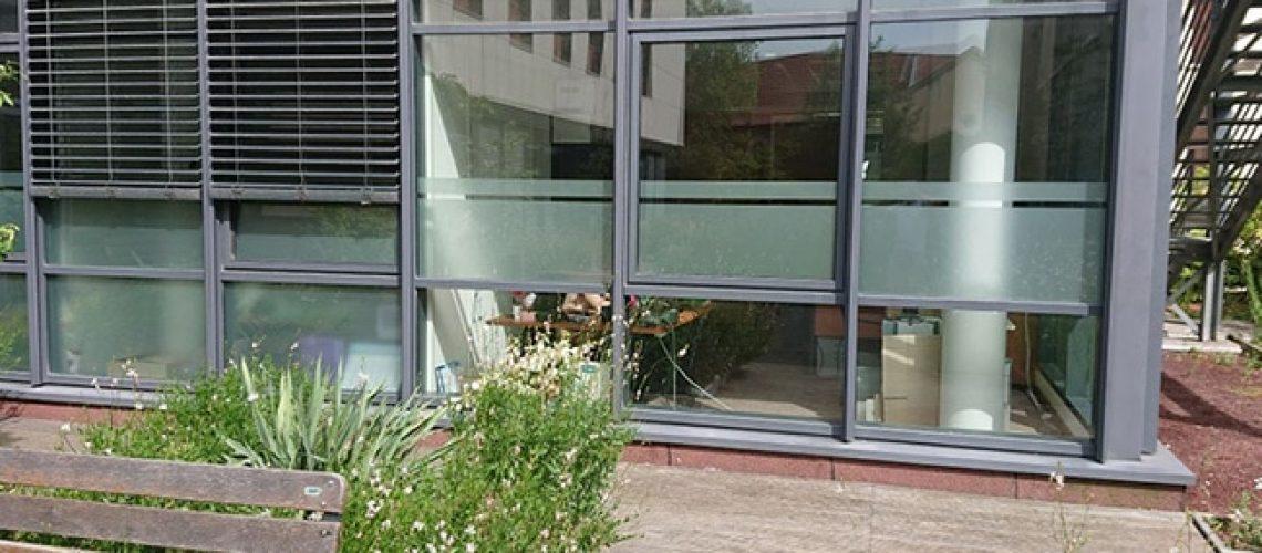 Film dépoli vitrage personnalisé, Confort Glass, Sathonay-Camp, Lyon, région Rhône-Alpes